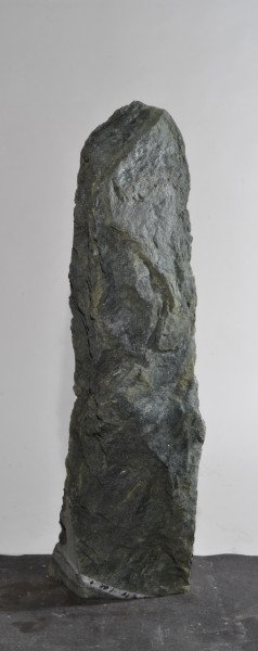 Dorfergrün DO16444
