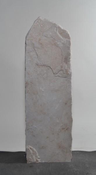Palisander PA16512