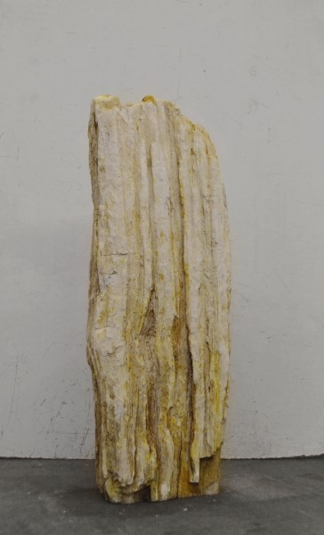 Versteinertes Holz HZ16673